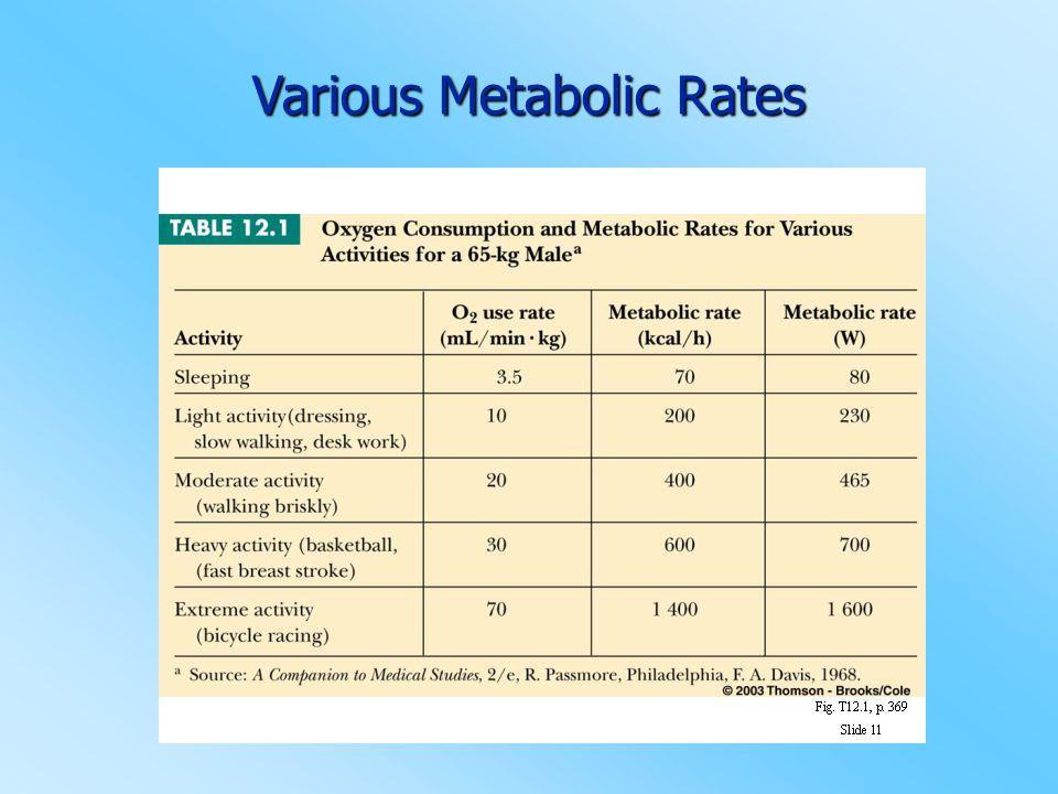 Various Metabolic Rates