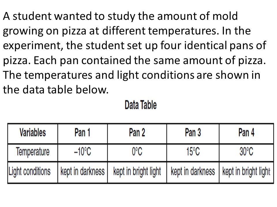A student wanted to study the amount of mold growing on pizza at different temperatures.