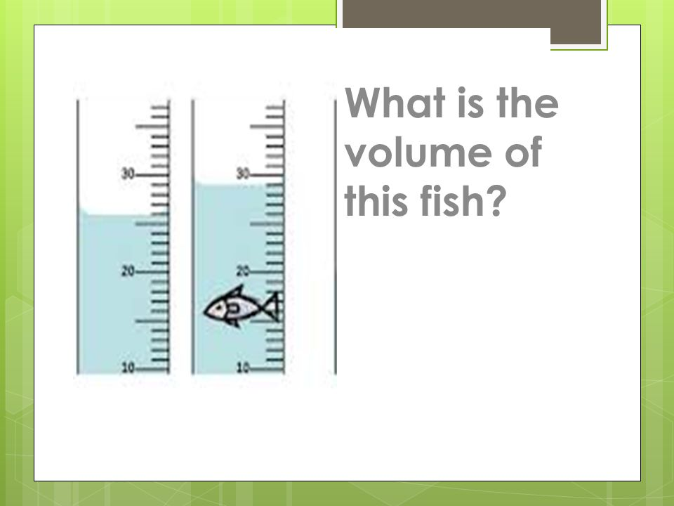 What is the volume of this fish