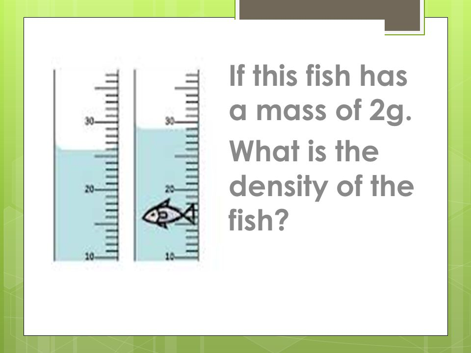 If this fish has a mass of 2g.