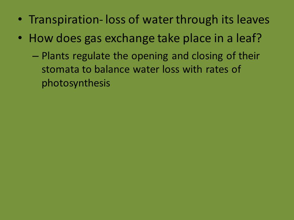 Transpiration- loss of water through its leaves