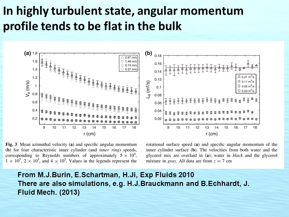 In highly turbulent state, angular momentum profile tends to be flat in the bulk