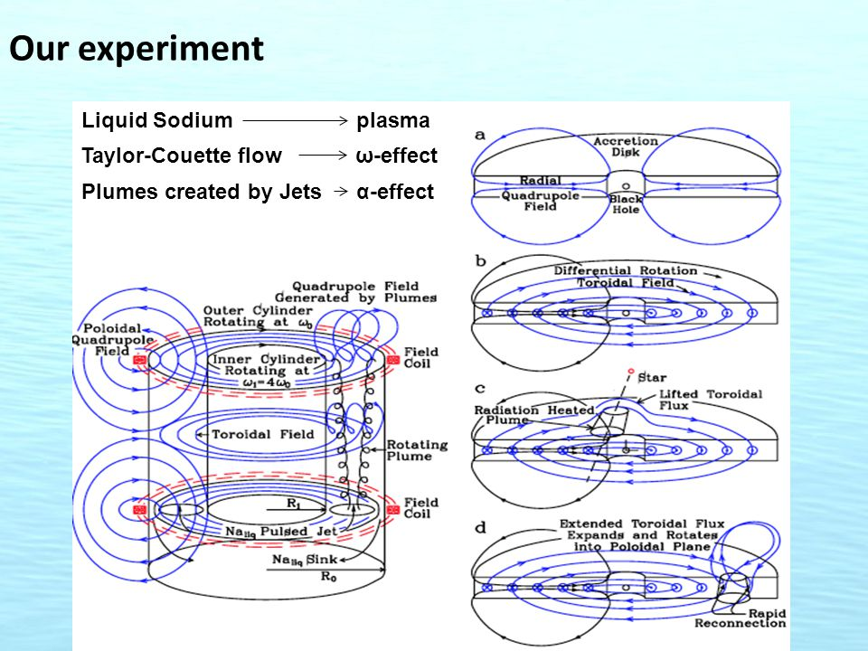 Our experiment Liquid Sodium plasma Taylor-Couette flow ω-effect