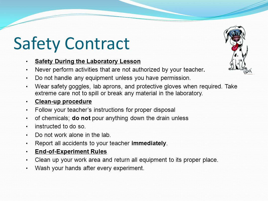 Safety Contract Safety During the Laboratory Lesson