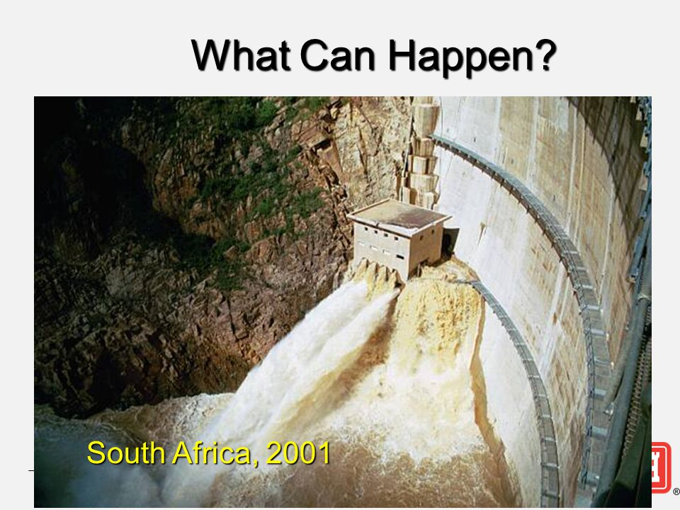 What Can Happen South Africa, 2001