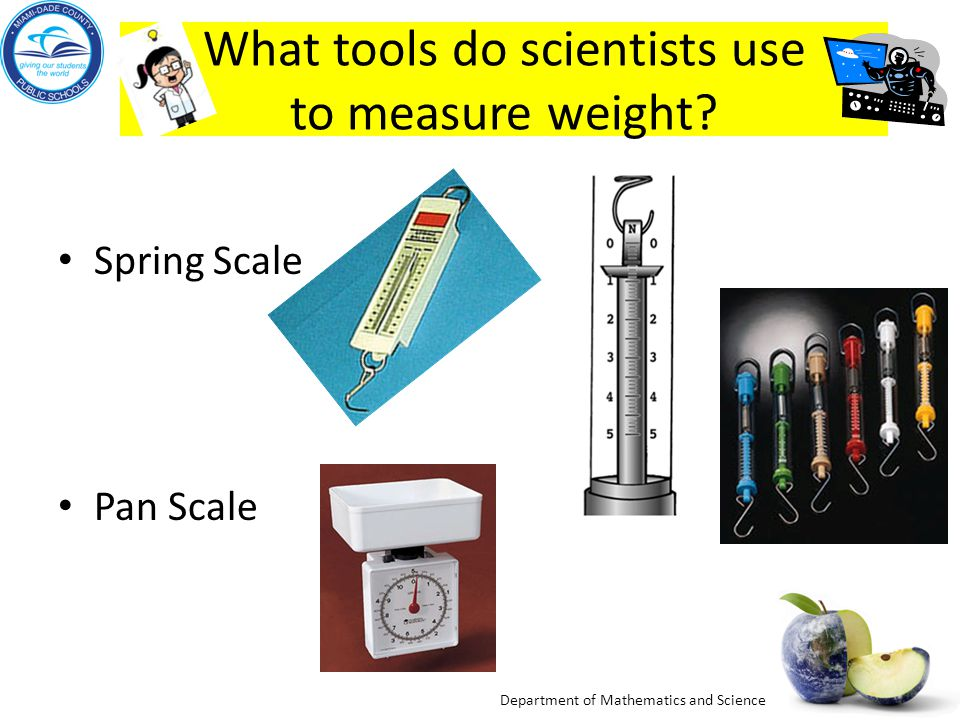 What tools do scientists use to measure weight