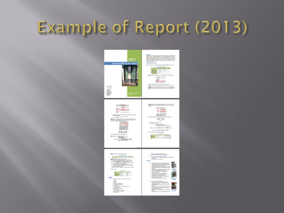 Example of Report (2013)