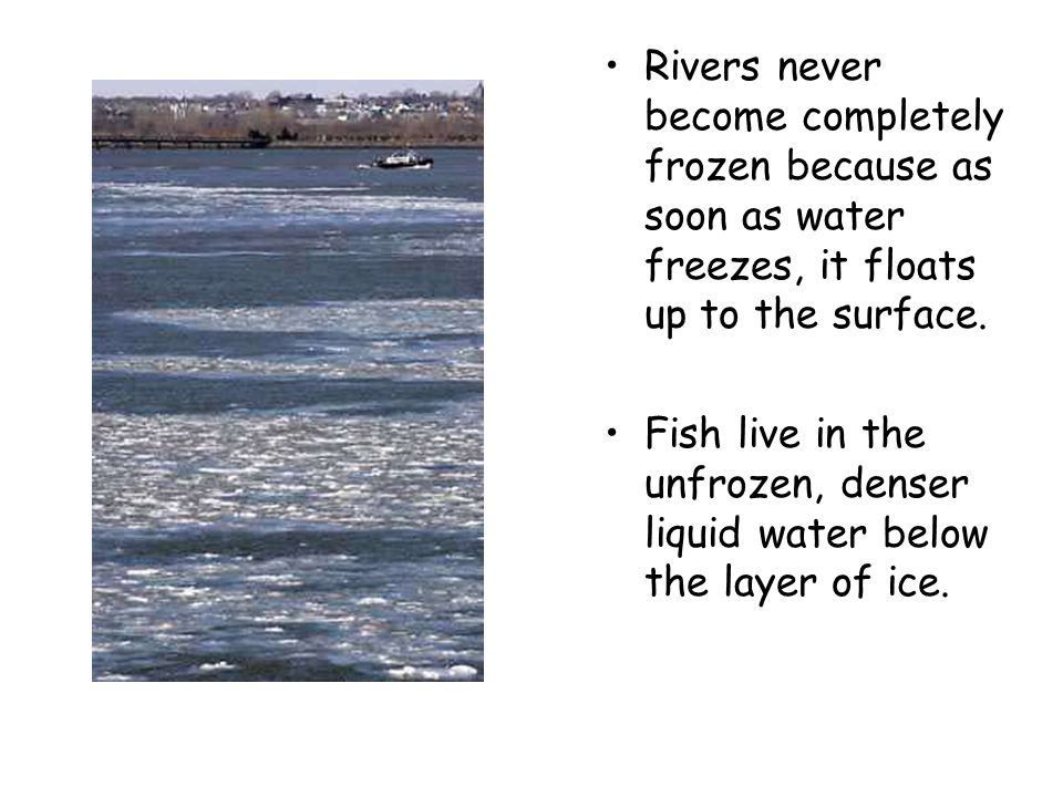 Rivers never become completely frozen because as soon as water freezes, it floats up to the surface.