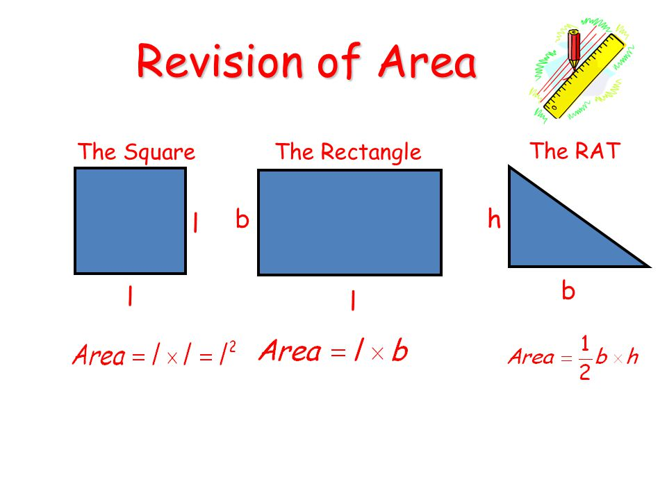 Revision of Area The Square The Rectangle The RAT b h l b l l