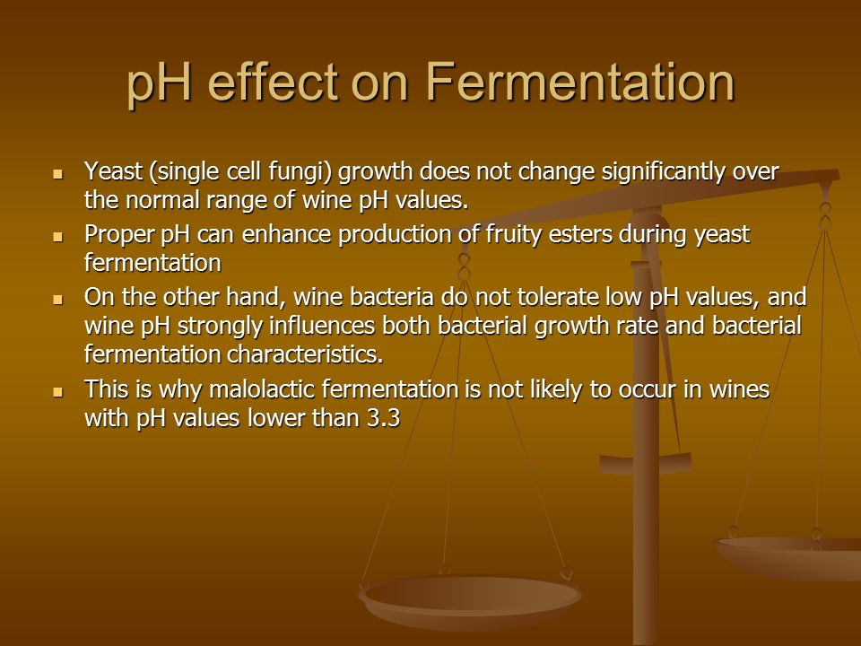 effect of ph on the rate of fermentation in yeast essay The kinetic theory explains the effect of temperature, volume and pressure on the   the more the enzyme of a particular substrate, the faster the rate of  in yeast,  anaerobic respiration is sometimes called fermentation.