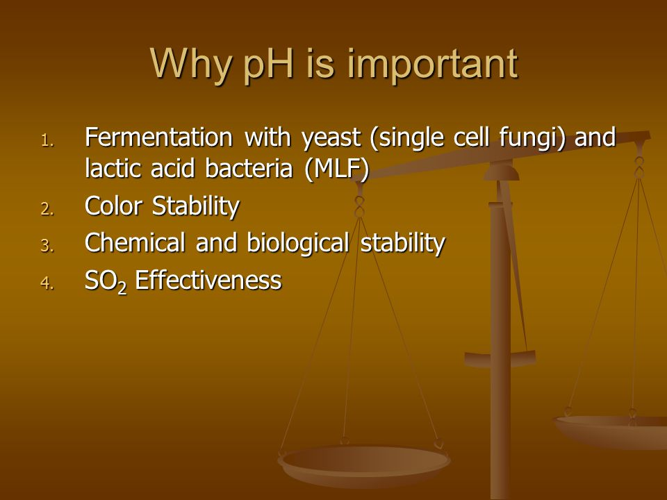Why pH is important Fermentation with yeast (single cell fungi) and lactic acid bacteria (MLF) Color Stability.