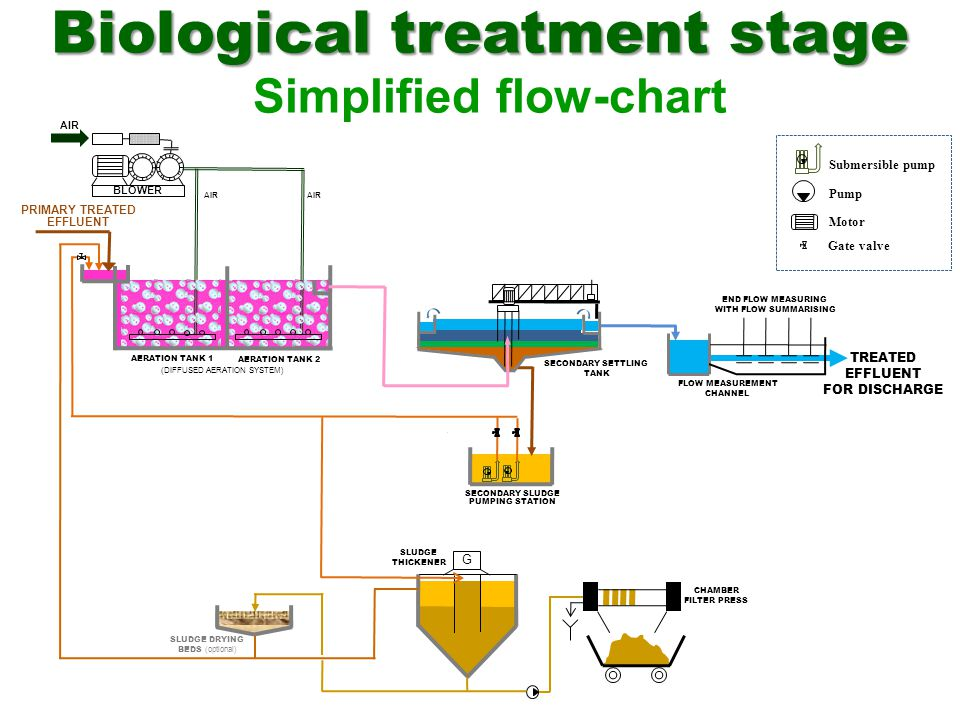 Biological treatment stage Simplified flow-chart