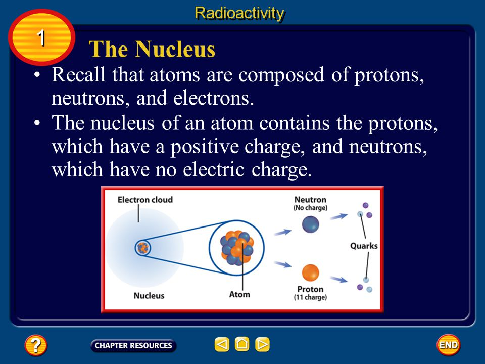 Radioactivity 1. The Nucleus. Recall that atoms are composed of protons, neutrons, and electrons.