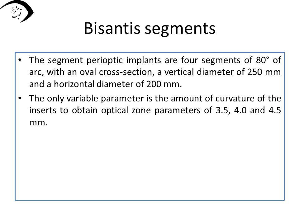 Bisantis segments