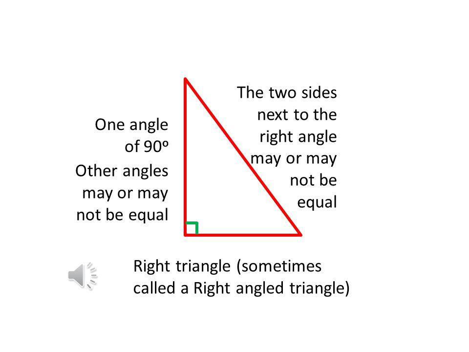 The two sides next to the right angle