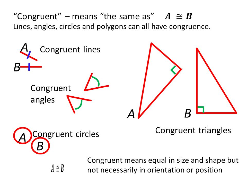A B A B A B Congruent – means the same as 𝑨 ≅𝑩 Congruent lines