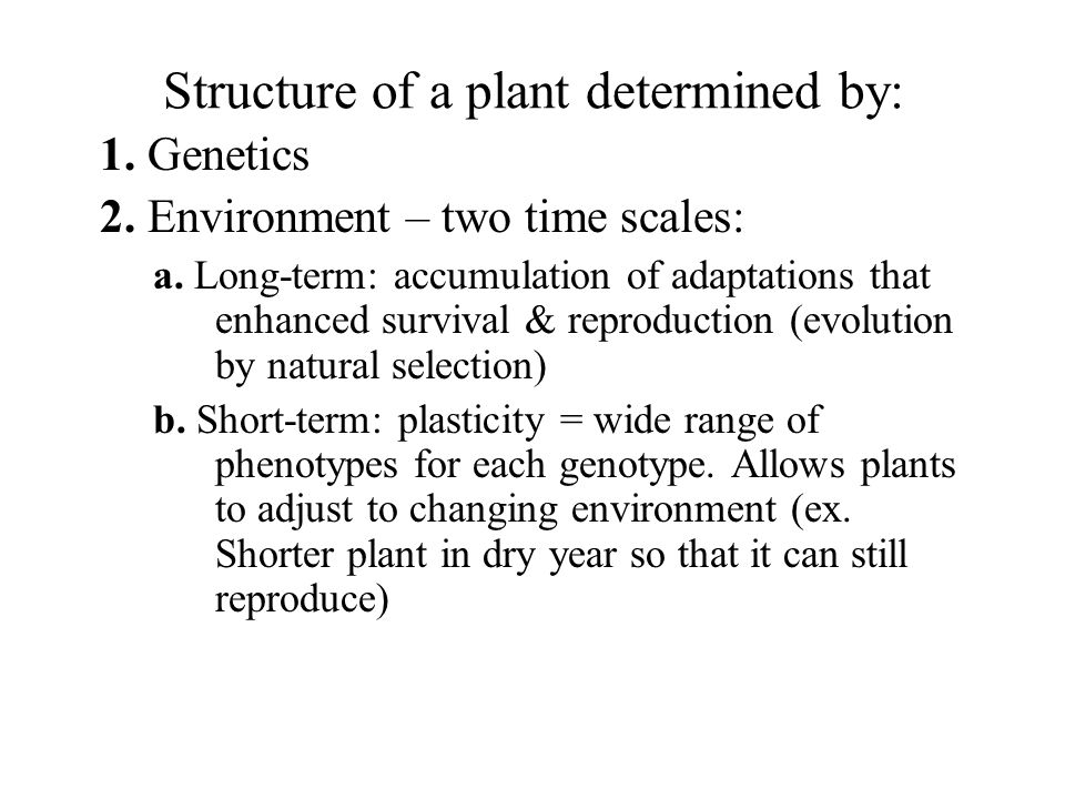 Structure of a plant determined by: