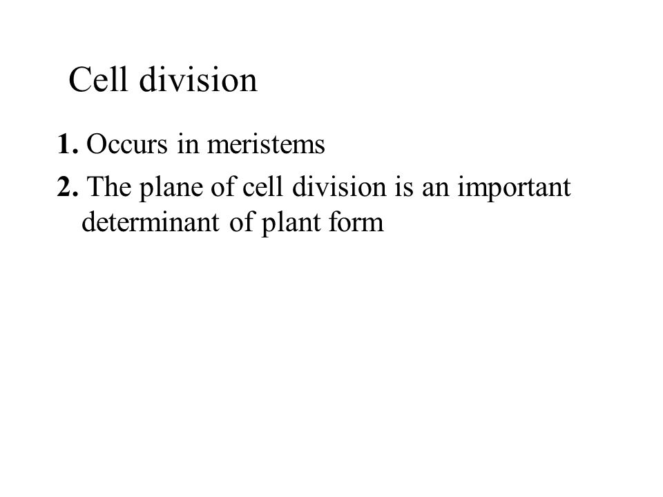 Cell division 1. Occurs in meristems
