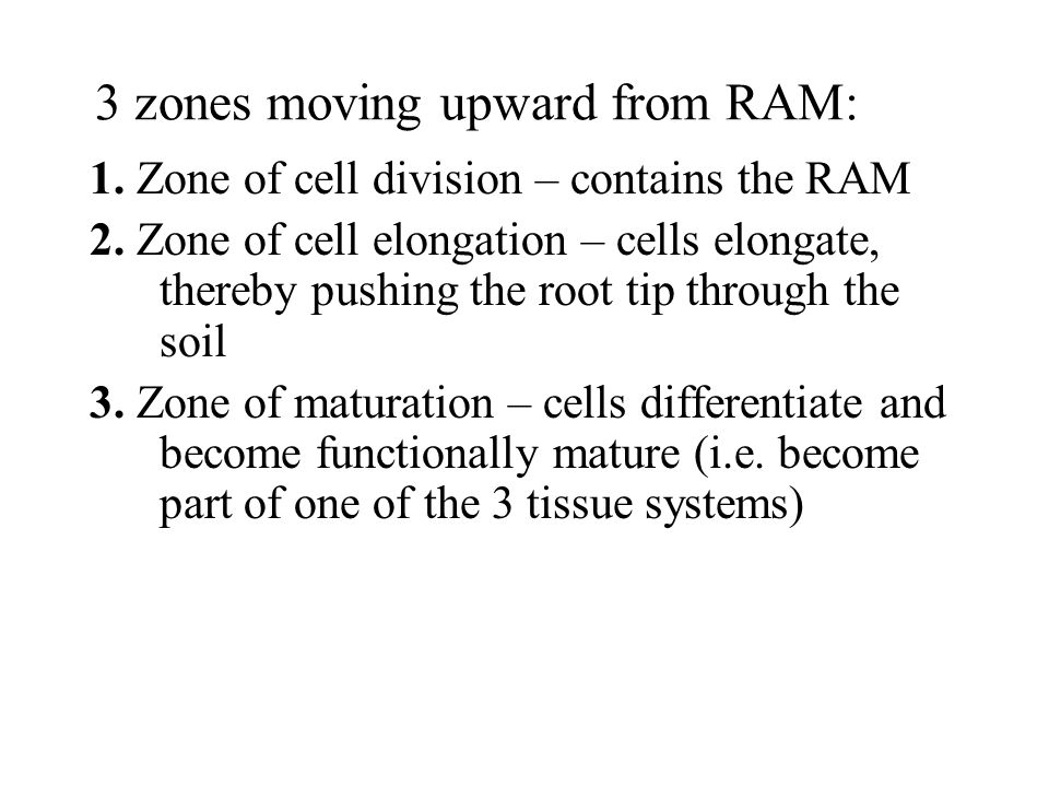 3 zones moving upward from RAM:
