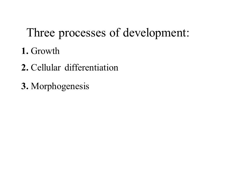 Three processes of development: