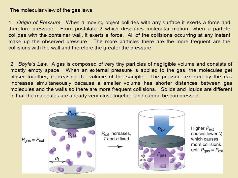 The molecular view of the gas laws: