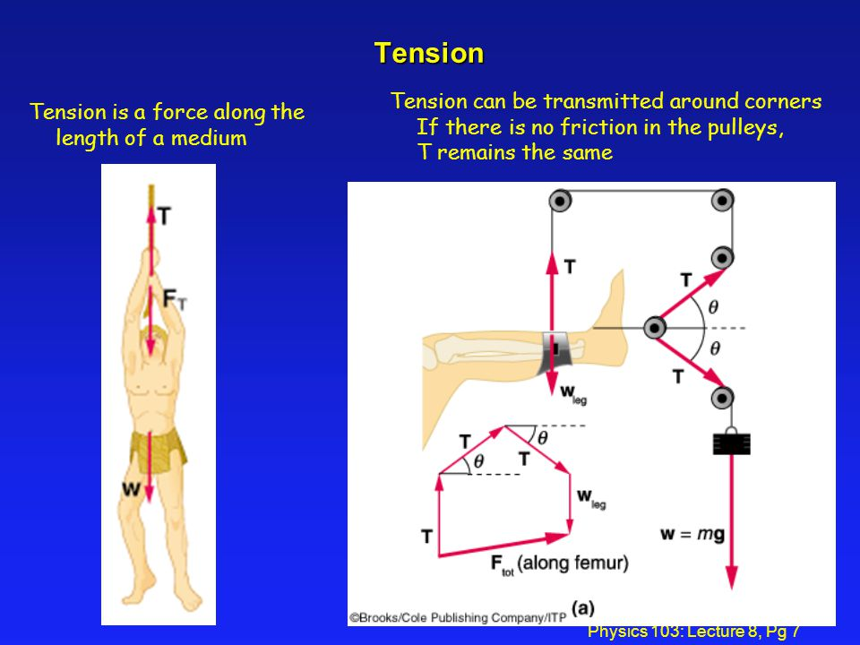 Tension Tension can be transmitted around corners If there is no friction in the pulleys, T remains the same.