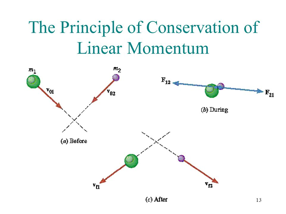 The Principle of Conservation of Linear Momentum