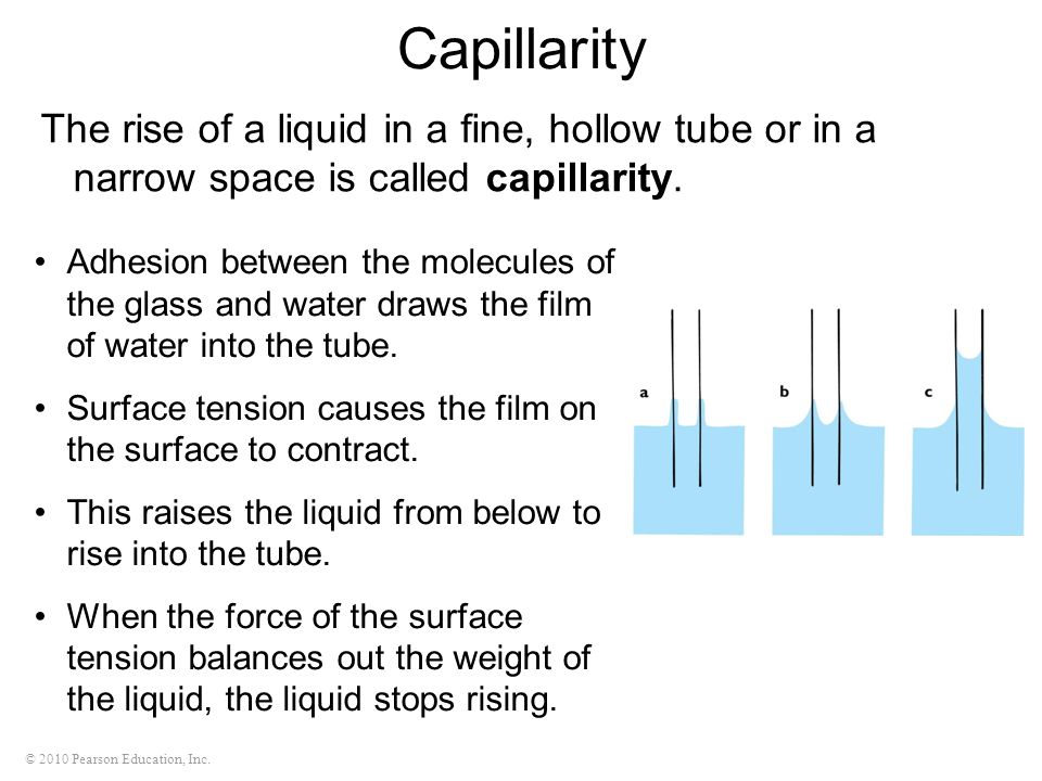 Capillarity The rise of a liquid in a fine, hollow tube or in a narrow space is called capillarity.