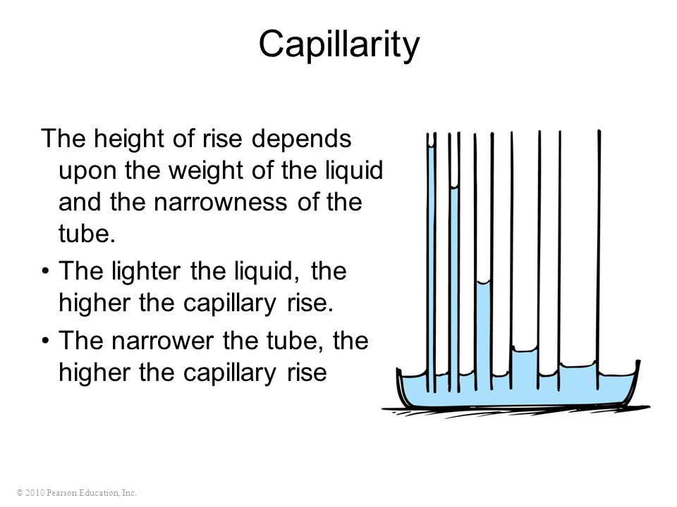 Capillarity The height of rise depends upon the weight of the liquid and the narrowness of the tube.