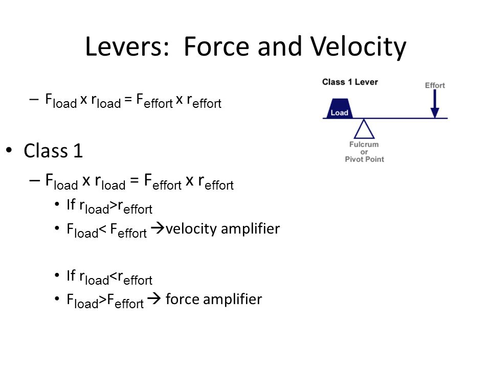 Levers: Force and Velocity