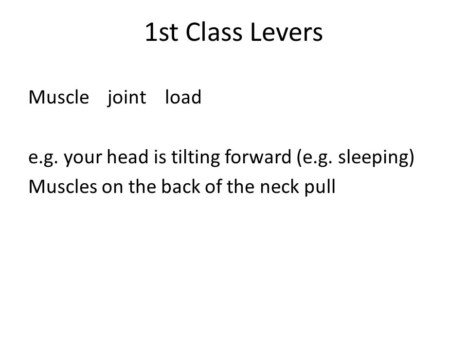1st Class Levers Muscle joint load