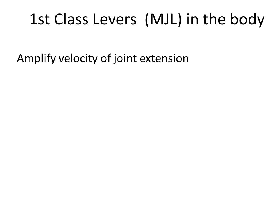 1st Class Levers (MJL) in the body