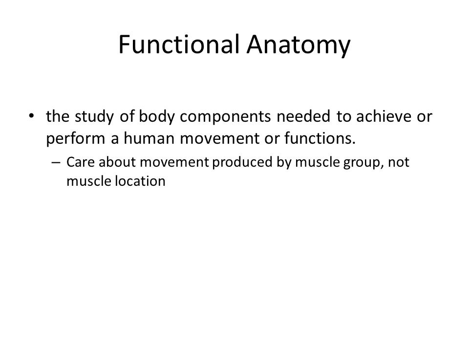 Functional Anatomy the study of body components needed to achieve or perform a human movement or functions.