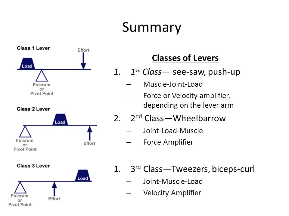 Lever Arm Of Saw : Iphy biomechanics objective to learn how
