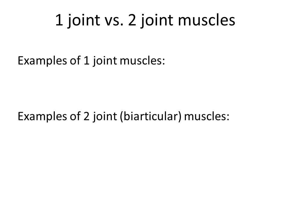 1 joint vs. 2 joint muscles Examples of 1 joint muscles: