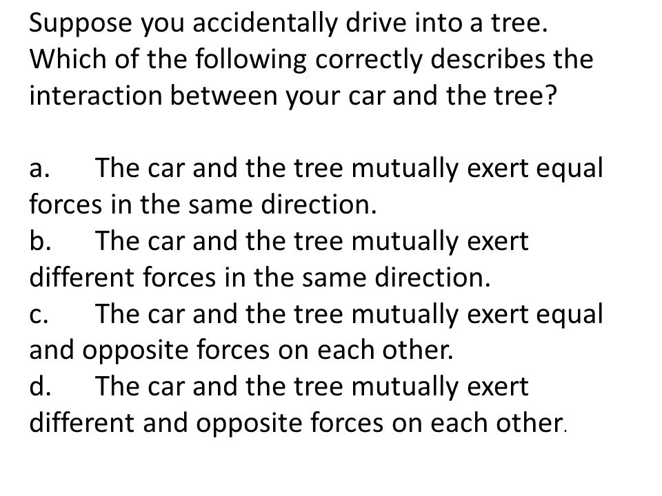 Suppose you accidentally drive into a tree