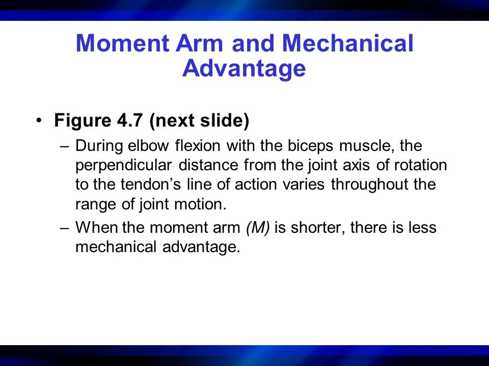 Moment Arm and Mechanical Advantage