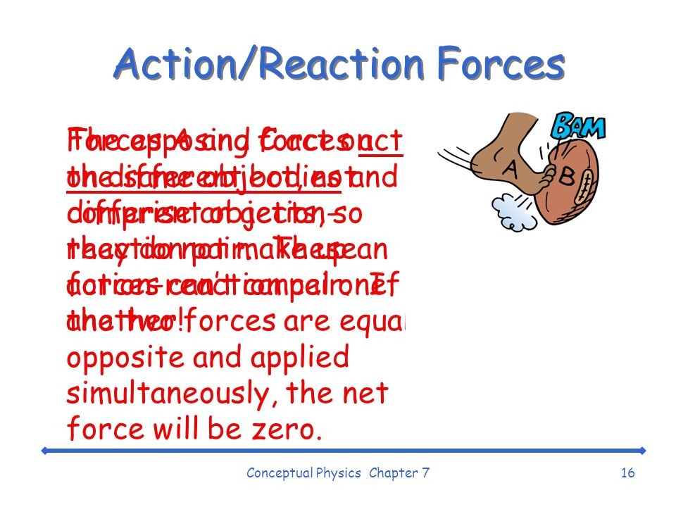 Action/Reaction Forces