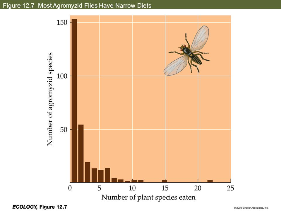 Figure 12.7 Most Agromyzid Flies Have Narrow Diets