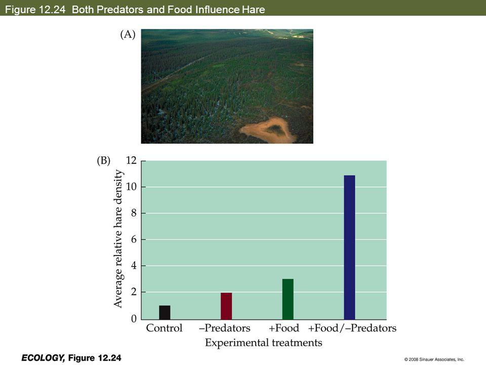 Figure 12.24 Both Predators and Food Influence Hare
