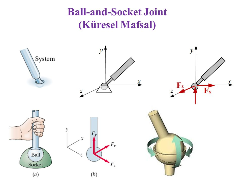 Ball-and-Socket Joint