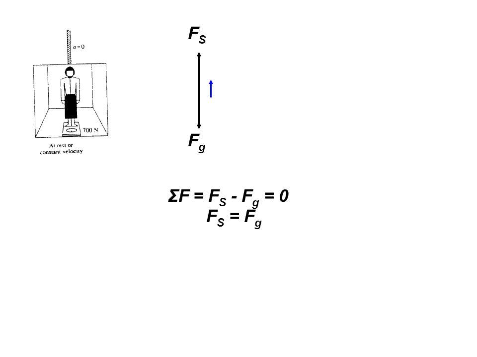 FS Fg ΣF = FS - Fg = 0 FS = Fg