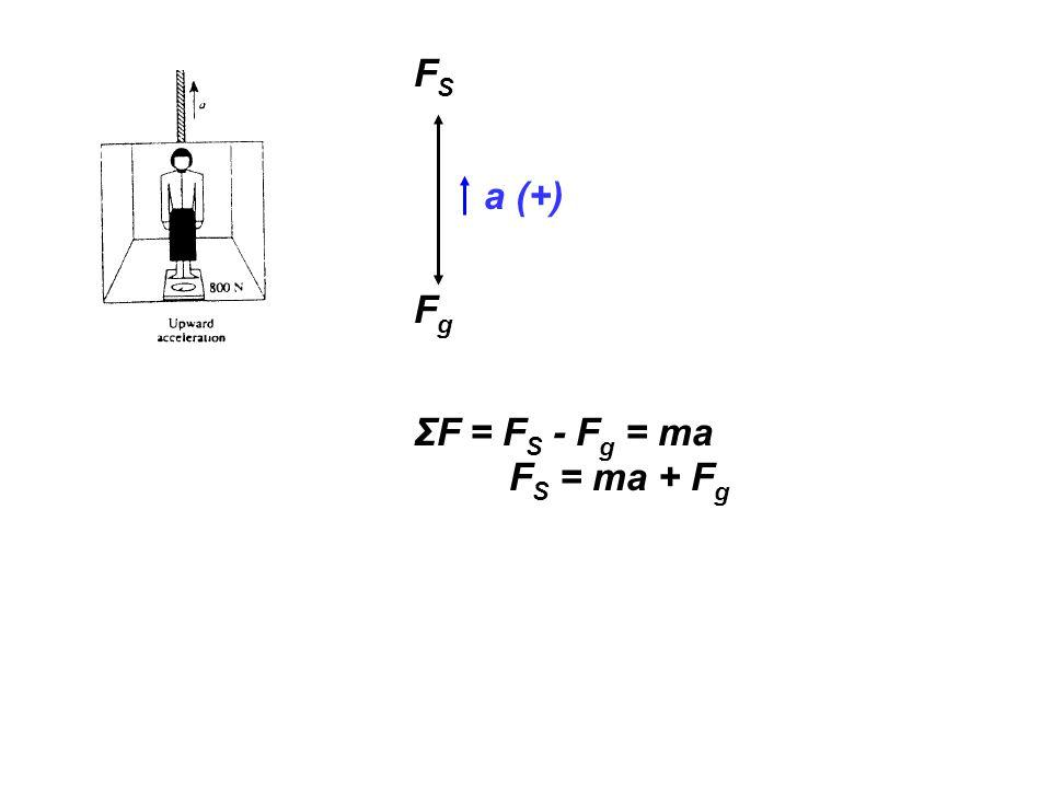 FS a (+) Fg ΣF = FS - Fg = ma FS = ma + Fg