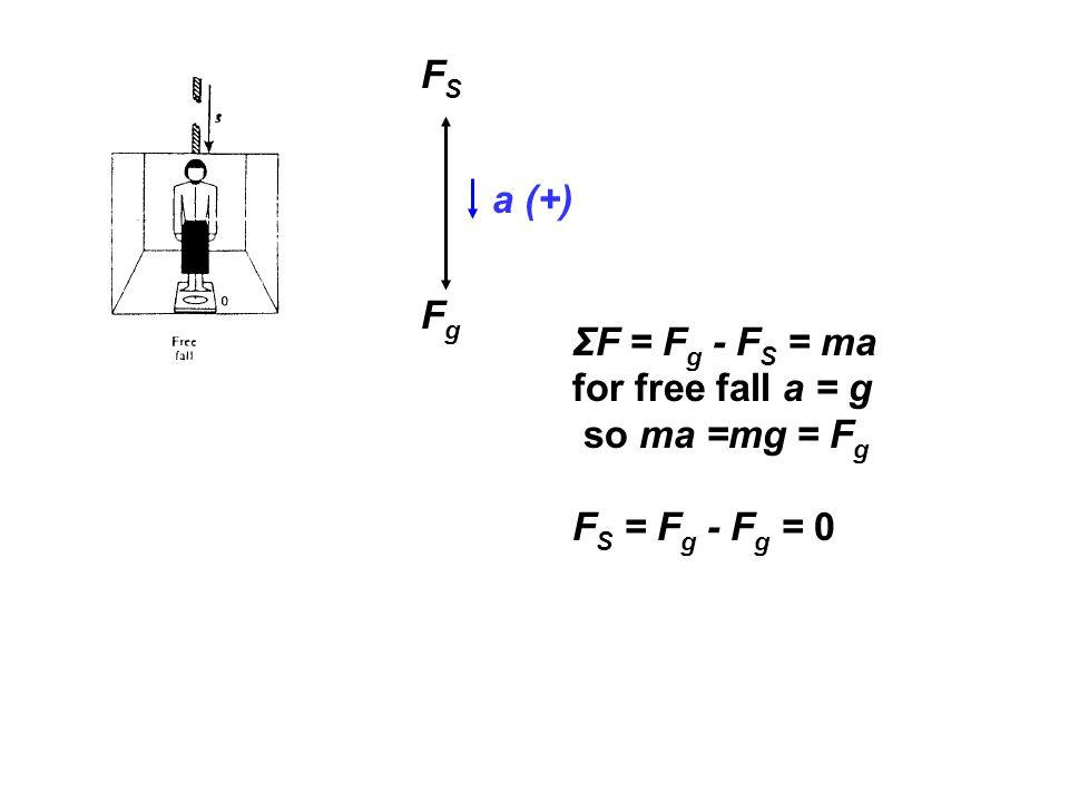 FS a (+) Fg ΣF = Fg - FS = ma for free fall a = g so ma =mg = Fg FS = Fg - Fg = 0