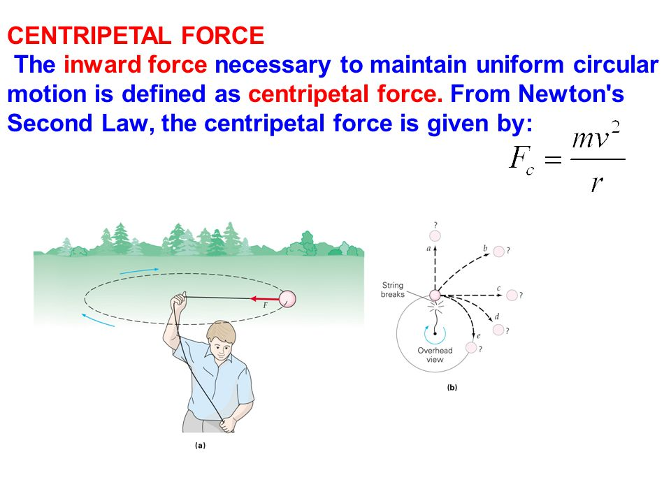 CENTRIPETAL FORCE The inward force necessary to maintain uniform circular motion is defined as centripetal force. From Newton s.
