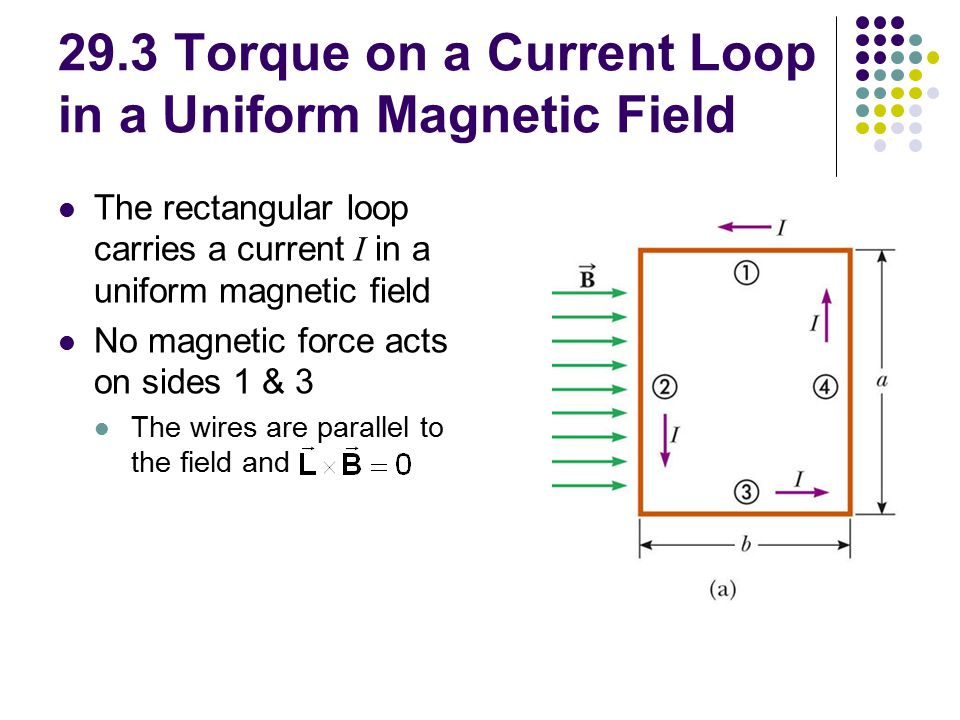 29.3 Torque on a Current Loop in a Uniform Magnetic Field