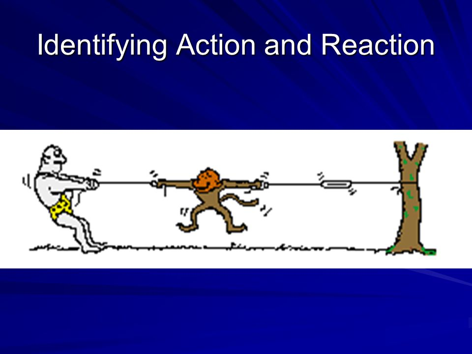 Identifying Action and Reaction
