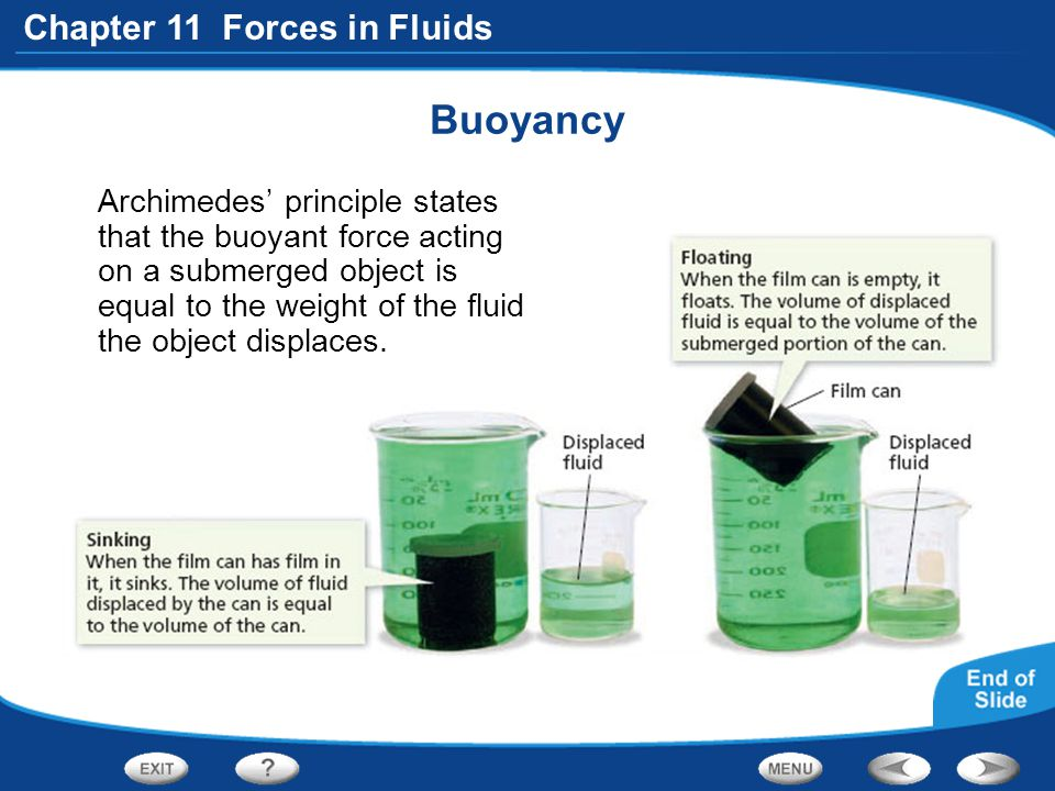 Buoyancy Archimedes' principle states that the buoyant force acting on a submerged object is equal to the weight of the fluid the object displaces.
