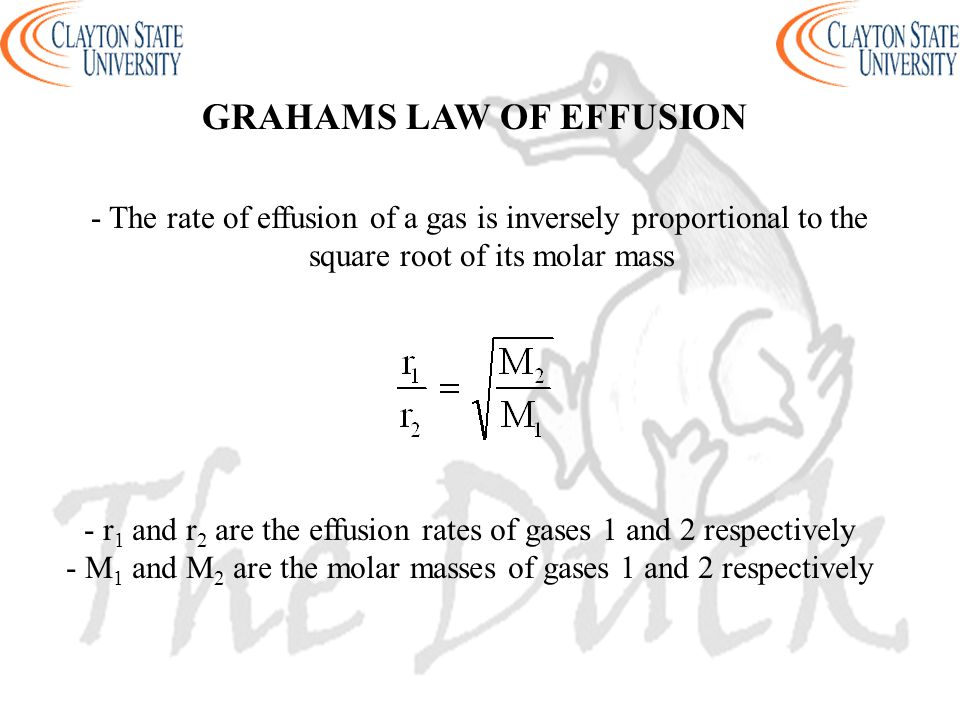 GRAHAMS LAW OF EFFUSION