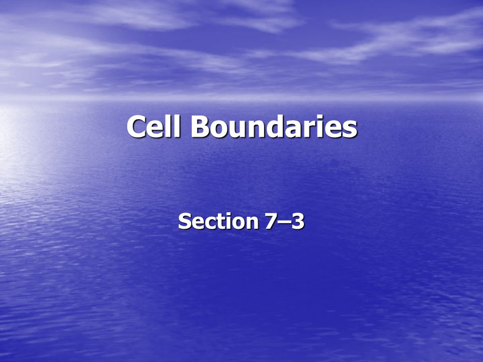 Cell Boundaries Section 7–3